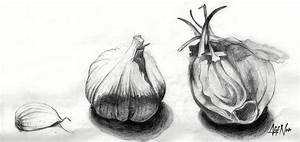 Garlic Drawing Drawing by Afif Nor