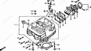 Honda Motorcycle 1981 Oem Parts Diagram For Cylinder Head