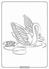 Swan Coloring Printable Pdf Whatsapp Tweet Coloringbay sketch template