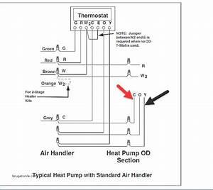 Draw Tite Activator Wiring Diagram Download