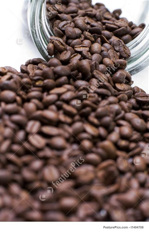 Savor the story of coffee and the people who love it. Coffee Seeds Picture