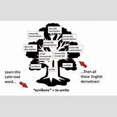 To Increase English Vocabulary! Livelylatinlivelylatin