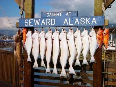 alaska fishing guides choosing alaska fishing guides