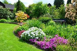 Sichtschutz Pflanzen Blühend : die besten 25 heckenpflanzen immergr n ideen auf pinterest sichtschutz pflanzen immergr n ~ Markanthonyermac.com Haus und Dekorationen