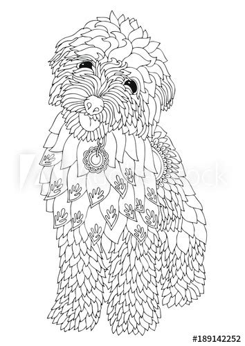 goldendoodle dog pages coloring pages