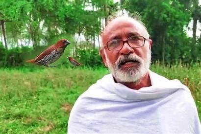 Farmer Feed Birds Muthu