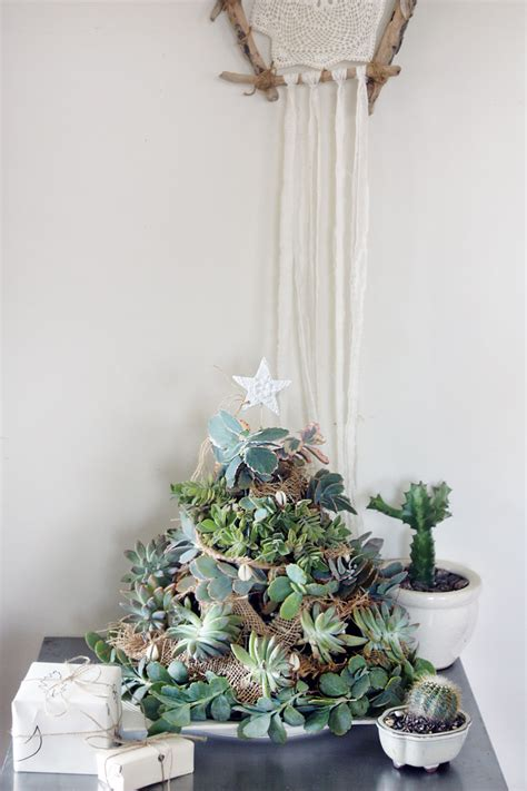 diy succulent tree sustainability  style
