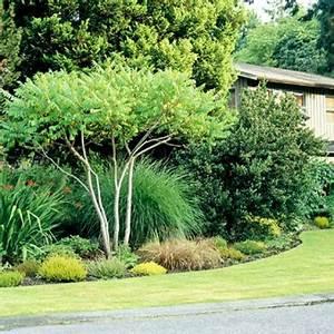 Baum Vorgarten Immergrün : gartenbepflanzung am hang ~ Michelbontemps.com Haus und Dekorationen