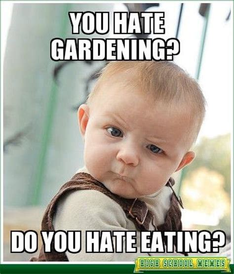 Gardening Memes - 17 best images about gardening quotes and memes on pinterest gardens seed shop and first day