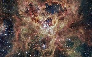 File:30 Doradus or NGC 2070.jpg
