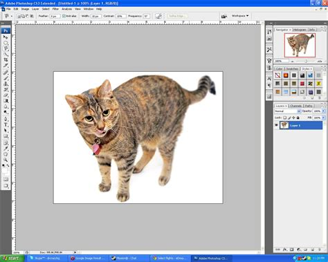 How To Get Rid Of White Background In Paint Remove White Background On Photoshop The Place For All