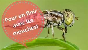 Produit Contre Les Moucherons : anti mouche r pulsif naturel et rem de ~ Premium-room.com Idées de Décoration