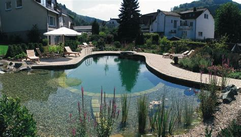 Swimming Pond : Swimming Ponds/natural Swimming Pools-pond Cleaning