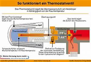 Wie Funktioniert Ein Heizkörper : heizungsthermostat funktionsweise co2online ~ A.2002-acura-tl-radio.info Haus und Dekorationen