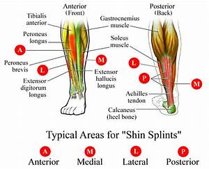 Shin Splints  Causes  Symptoms  Treatment Shin Splints