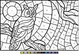 Number Owl Coloring Game Pages Print sketch template
