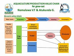 Aquaculture production value chain for grow-out in Uganda