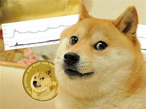 Elon Musk Dogecoin Meme / A 33-year old Dogecoin investor ...
