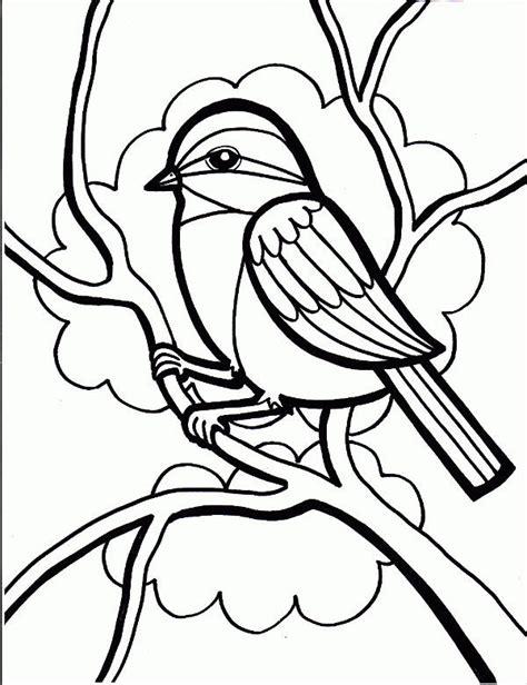 bird coloring pages jpg ai illustrator   premium templates
