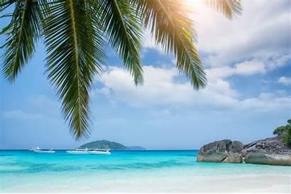 Wallpapers Island Islands Morze Wyspy Hintergrundbilder Palmy