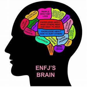 Enfj Brain