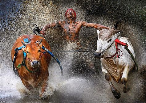 india photographer hire sonali goswami hire