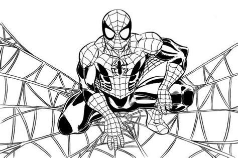 spiderman da colorare disegni  bambini nanopress donna