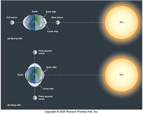 Eclipses, perigee, supermoons and boars… | tidalsheffield