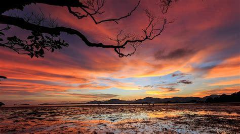 wallpaper sunset clouds  nature
