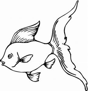 Goldfish Coloring Pages - ClipArt Best