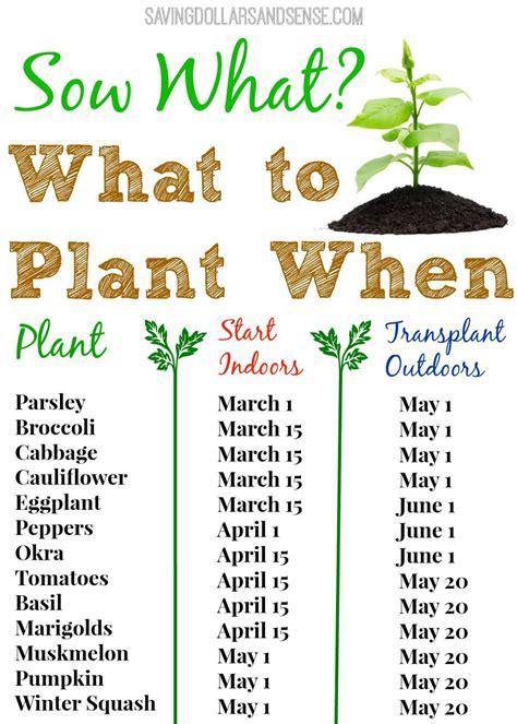 plant  chart saving dollars sense