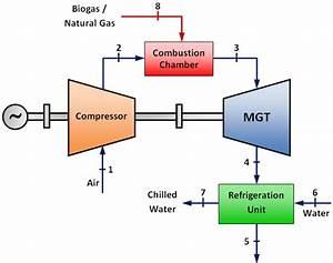 Cogeneration Plant Overview