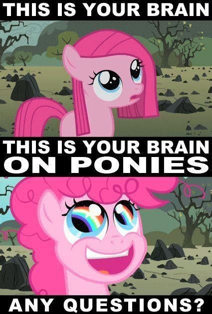 Mlp Funny Meme - 51 best my little pony memes images on pinterest my little pony friendship ponies and fluttershy