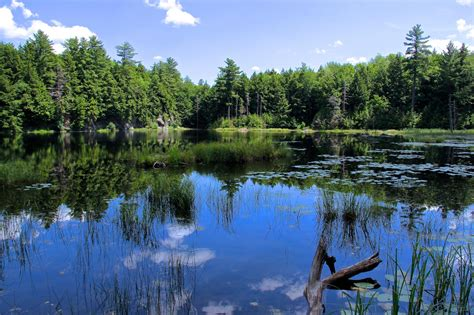 moon half park state pond vermont campground fair haven tripadvisor attractions natural vt camping most onlyinyourstate caterpillar incredible cabin everyone