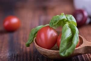 Bester Dünger Für Tomaten : rezepte archive gesunde nahrung auf einen blick die ~ Michelbontemps.com Haus und Dekorationen