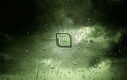 Linux Mint Wallpapers Gnu Desktop Dew Pantalla