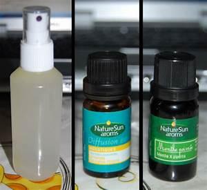 Lavande Anti Moustique : luttez contre les moustiques avec les huiles essentielles the green geekette ~ Nature-et-papiers.com Idées de Décoration