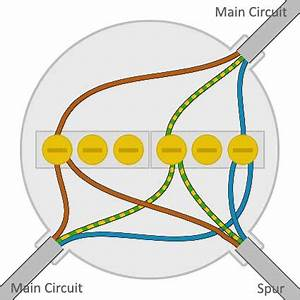 Electrical Junction Box Wiring Diagrams Residential 301 Moved Permanently Wires Spliced Inside A Junction Box With Images Automatic Control 6 Way Junction Box Wiring Electrical Wiring Light Wiring Junction Box Radial Lighting
