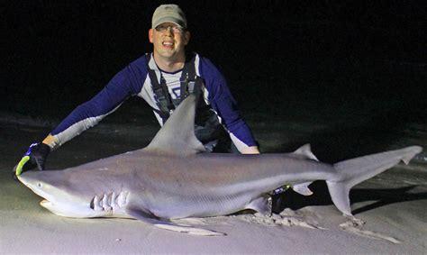 shark florida beach panama fishing sand bar surf sandbar thumbnail shore sharks caught foot rigs fish nice youtu saltwater catsandcarp