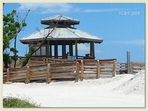 17 best images about tcb treasure coast beaches on