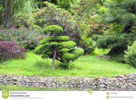 Japanischer Garten Preise by Japanischer Garten Exotische Anlagen Fr 252 Hling Breslau
