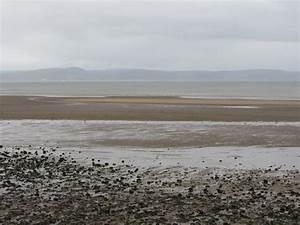 Swansea Bay - West Cross | Glamorgan | UK Beach Guide
