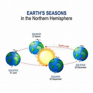 Earth S  Seasons In The Northern Hemisphere Stock Vector