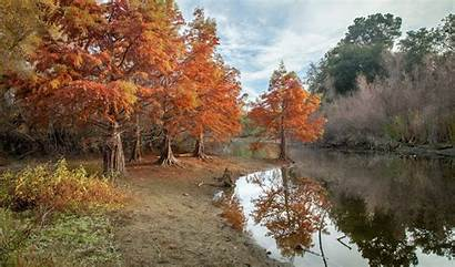 Autumn Pond Park Wallpapers Trees Nature River