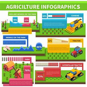 Agriculture Farming Infographic Isometric Poster