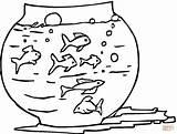 Peces Coloring Peixes Aquarium Colorear Colouring Pecera Pintar Imprimir Clipart Kleurplaten Fish Tank Dibujo Dibujos Imagens Acuario Printable Desenhos Kleurplaat sketch template