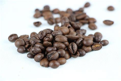kaffeesatz als dünger für orchideen kaffeesatz im garten als d 252 nger diese pflanzen lieben ihn hausgarten net