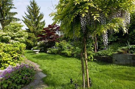 Hintergrundbilder Natur Garten Bäume Strauch