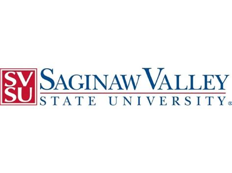 saginaw valley state ceo chapters