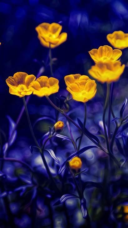 Purple Yellow Flowers 4k 5k Buttercups Windows